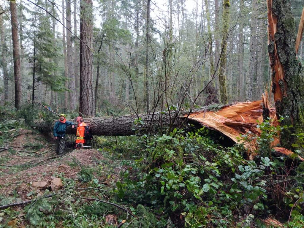 Safety Advisory & Post-Storm Trail Closures - Nanaimo